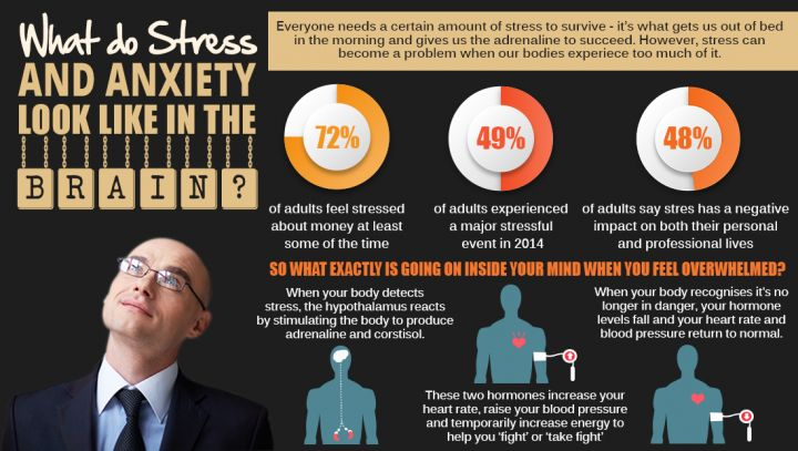 Psychology-Infographic-Stress-And-Anxiety Psychology Infographic : Stress And Anxiety