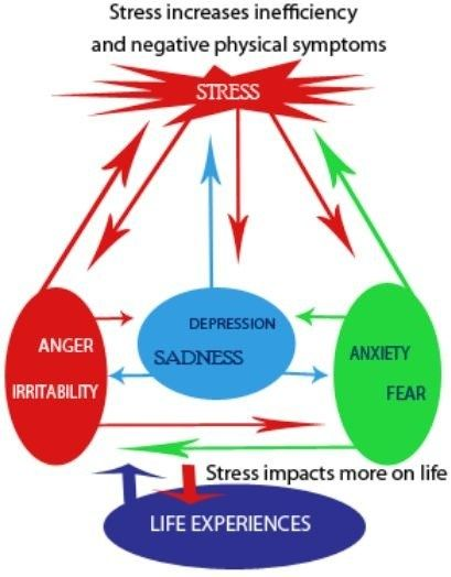 Psychology Infographic : Stress management : diagram of ...