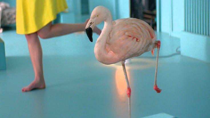 Healthcare-Advertising-Healthcare-Advertising-Chambord-flamingo-advert-BecauseNoReason-Bof Healthcare Advertising : Healthcare Advertising : Chambord flamingo advert #BecauseNoReason Bof!