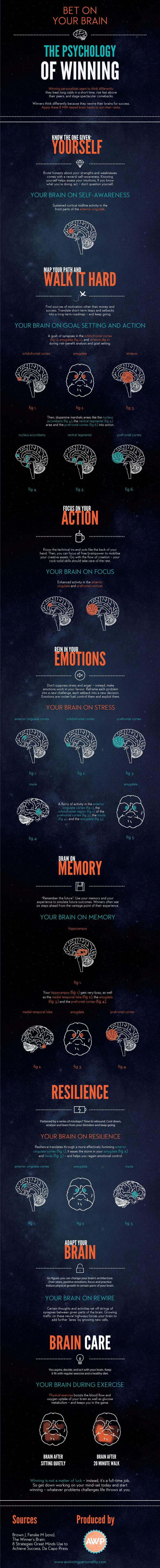 eb7d521efceb7befa9d99ade5ec0ba1b--healthy-brain-brain-health Psychology Infographic : Bet-on-your-Brain-The-Psychology-of-Winning Apuesta por tu cerebro. La psicolog...