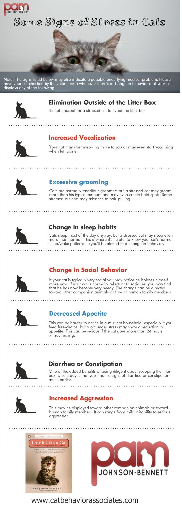 Psychology-Infographic-signs-of-stress-in-cats-infographic Psychology Infographic : signs of stress in cats infographic