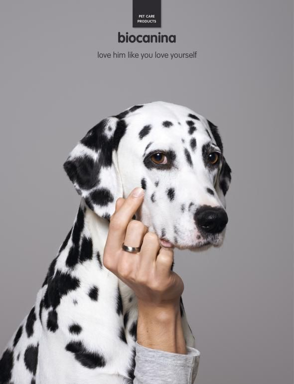 Advertising-Campaign-Biocanina-Pet-2-Ads-of-the-World™ Advertising Campaign : Biocanina: Pet, 2   Ads of the World™