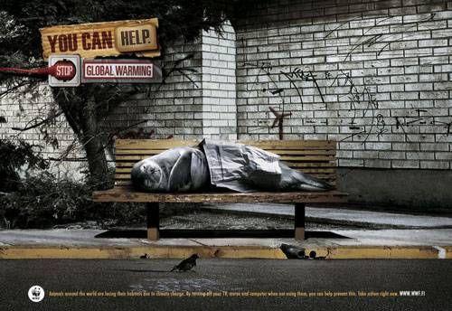 Advertising-Campaign-WWF-Homeless-Seal Advertising Campaign : WWF: Homeless Seal