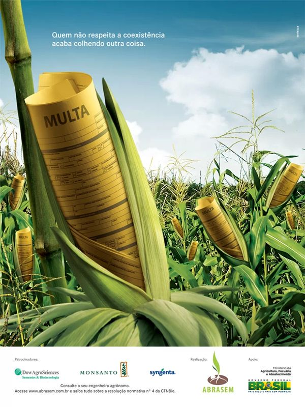 Advertising-Campaign-Corn-Fine-on-Behance Advertising Campaign : Corn Fine on Behance