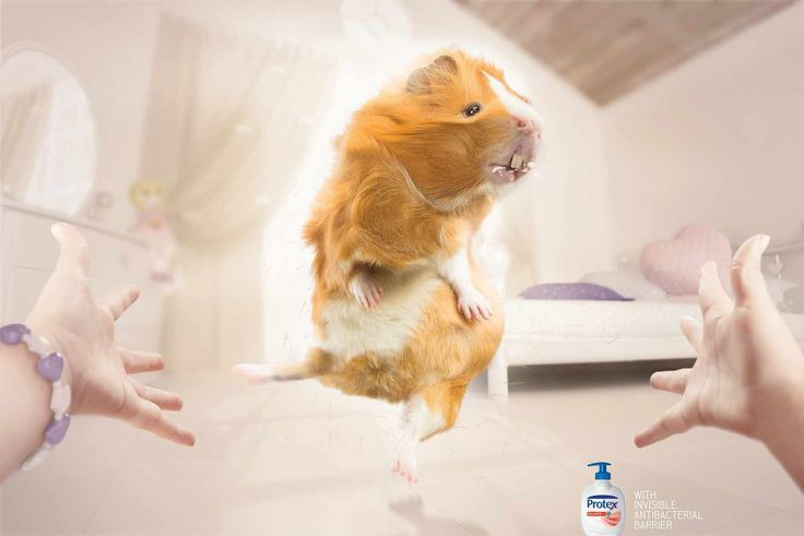 Healthcare-Advertising-Healthcare-Advertising-Protex-With-invisible Healthcare Advertising : Healthcare Advertising : Protex - With invisible antibacterial barrier - Y&R Hea...