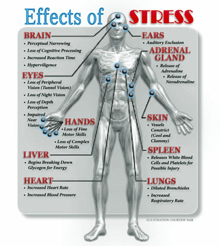 Psychology-Infographic-Effects-of-Stress...-Stress-damages-a-person39s Psychology Infographic : Effects of Stress... Stress damages a person's short-term memory.
