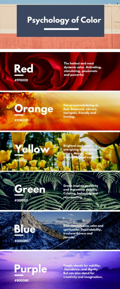 Psychology-Infographic-Psychology-of-Color-Infographic Psychology Infographic : Psychology of Color Infographic