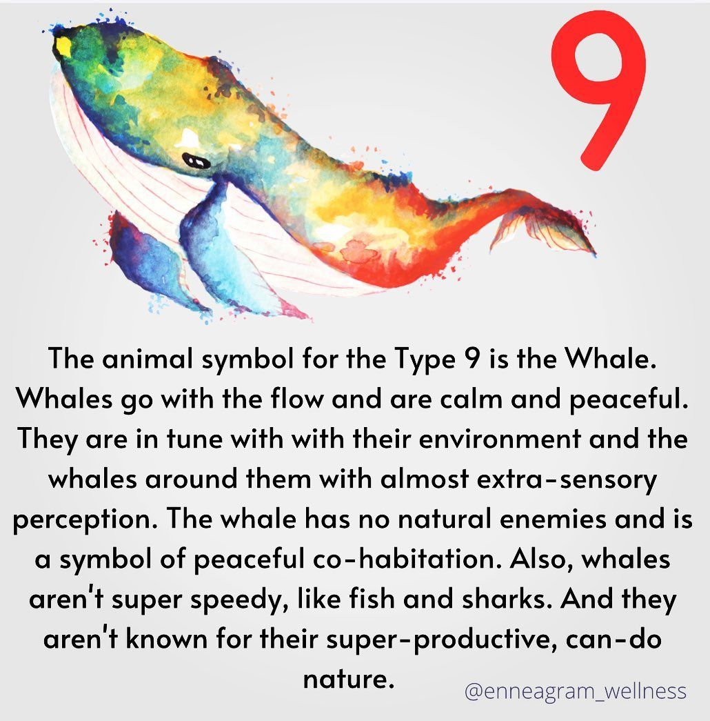"""Infographic-April-Poolson-on-Instagram-""""Is-there-an-animal Infographic : April Poolson on Instagram: """"Is there an animal you think would better represent the nine? I'd love to hear your comments. #enneagram #enneagram9 #enneagramnine…"""""""